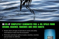 Oily-Gull-asking-for-DE-OIL-IT-791x1024